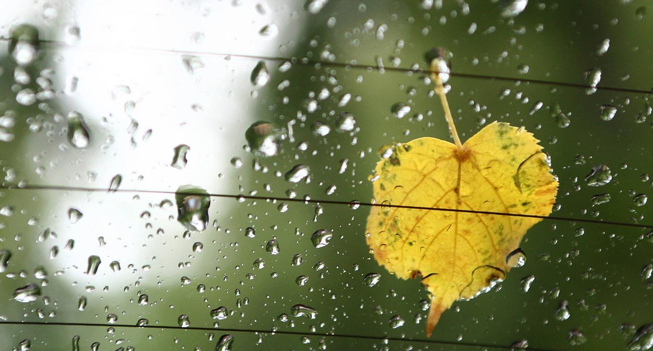 Yağmurlu Havalarda İzlenebilecek 9 Güzel Film
