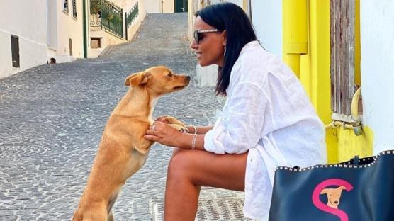Valentino'dan Kedi ve Köpeklere Özel Koleksiyon