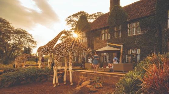 Afrika'da Sıra Dışı Deneyim: Zürafaların Malikanesi
