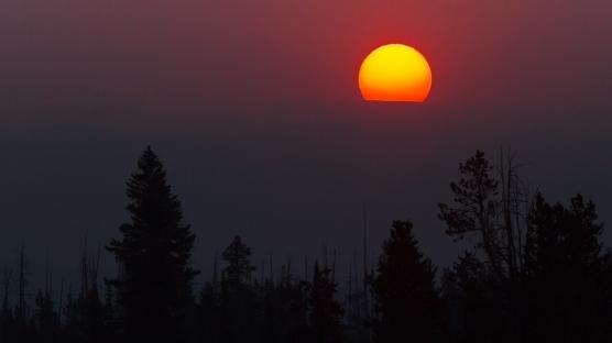 Hangi Tarihte Dünya Güneşe En Yakın Konumdadır?